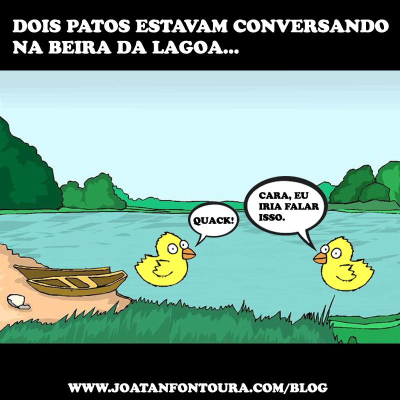 dois_patos_conversando_beira_lagoa